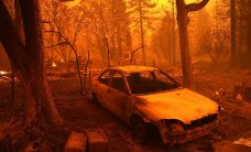 Camp Fire: Complete Coverage
