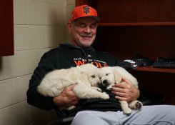 Puppies a Giant Hit in San Francisco's Spring Training Clubhouse