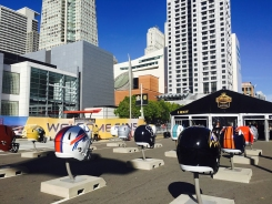 Super Bowl 50: Inside the NFL Experience