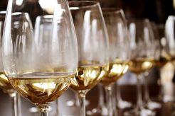 Santa Rosa JC Wine Classic