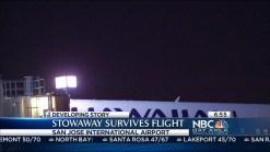Santa Clara Stowaway Survives Flight