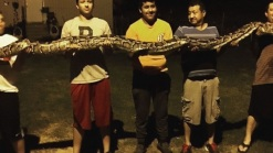 'It was Big Enough to Eat Someone': Teen Who Found Python