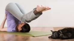 Cat Cafe Offers 'Fitness With Felines' Yoga Classes