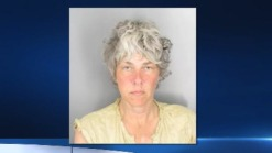 Police: Concord Woman Suspected of Sparking Wildfire