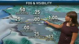 Kari's Forecast: Foggy Start, Sunny Day