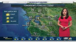 Bay Area Forecast: Foggy Morning