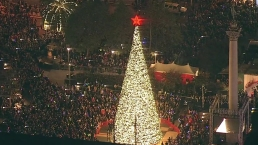 WATCH: Tree Lighting Ceremony at Union Square