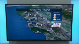 Vianey's Forecast: Sunny Sunday