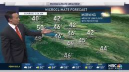 Forecast: Morning Fog, Rain Returning Soon