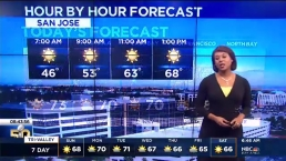 Kari Hall's Super Bowl Forecast