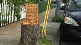 Meet the Oakland Family Who Made 'The Giving Tree' Stump
