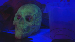 Family's Haunted House in East Bay Attracts Thousands