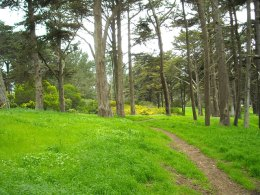 City Considers Closing Golden Gate Park at Night