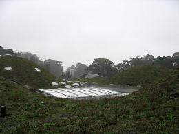 Academy of Sciences Living Roof Grows Up