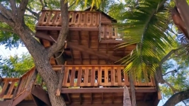 Calif. Family Hopes for 'Miracle' to Save $16K Tree House