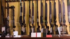 Americans' Views on Guns, Gun Control Is Evolving: Polls