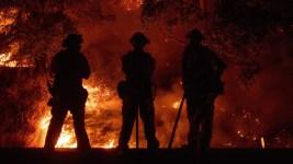 Firefighter Dies in Mendocino Complex Fire: Officials