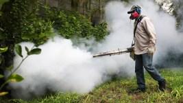 Congress OKs Stopgap Spending Bill, $1.1B to Fight Zika