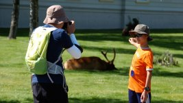 Visitor Misbehavior Abounds as US Parks Agency Turns 100