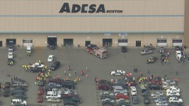 Several Hurt When Car Plows Into Group at Auto Auction