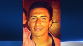 Missing Berkeley Student Fatally Struck by Car: Police