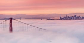 The Beautiful Sights of the Bay Area Fog