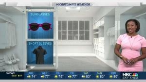 <p>Skies will gradually clear with warmer temperatures this afternoon. Meteorologist Kari Hall has details in the Microclimate Forecast.</p>