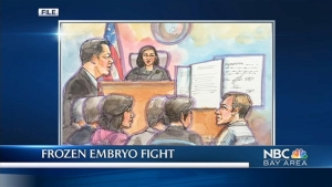 Closing Arguments in Controversial Embryo Case