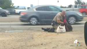 Woman Punched by Calif. Officer Taken into Custody Again