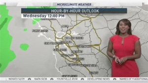 Freezing temperatures and late day rain is in the forecast for the Bay Area. Details in the Microclimate Forecast.