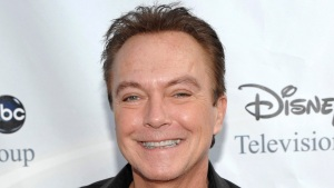 David Cassidy in Critical Condition With Organ Failure: Rep