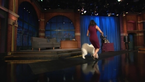 'Late Night': Showing a Westminster Dog Show Contestant