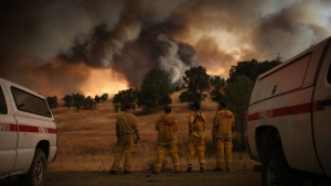 Rocky Fire Grows to 60K Acres, 12% Contained