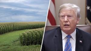 Frustrated US Lawmakers Threaten Action on Trump's Tariffs