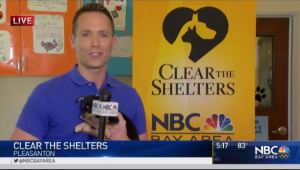 Chief Meteorologist Jeff Ranieri helps spread the word about our annual Clear The Shelters event.  He's joined by some new and very cute friends at Valley Humane Society in Pleasanton.  Plus, the hotter weekend forecast.