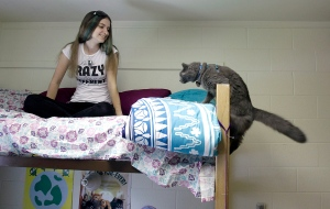 25 Pet-Friendly Colleges in America