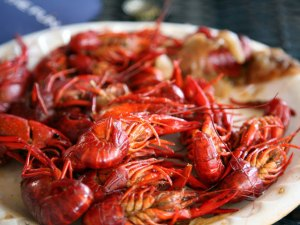 Napa Meets NOLA: Wine Country Cajun Festival