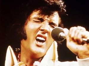 Elvis Tribute Day