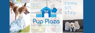 Silicon Valley Pet Project's Pup Plaza Events