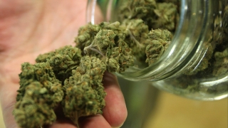 San Jose Leaders Pass Ordinance Allowing Recreational Pot Sales Only at Existing Medical Marijuana Dispensaries