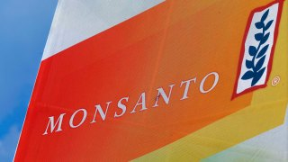 Judge Dismisses San Jose, Oakland and Berkeley's Lawsuits Against Monsanto Over PCB Clean-Up Costs