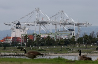 Port of Oakland Worker Hospitalized After Containers Collapse: Official