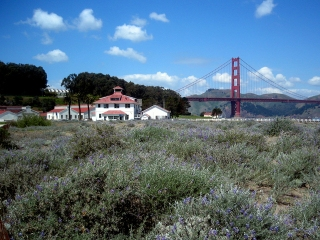 Crissy Field in San Francisco Slated for Makeover