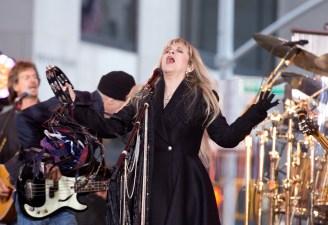 Fleetwood Mac: Back Next Year