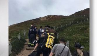 Man in Moderate Condition After Falling Off Cliff in SF