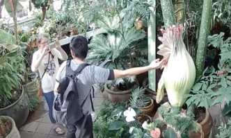 Caught on Cam: Man Fondles Corpse Flower in San Francisco