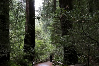 Government Shutdown Leads to Closure of Many Bay Area Parks