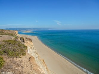 Surfer Bit on Foot by Shark in Point Reyes: Officials
