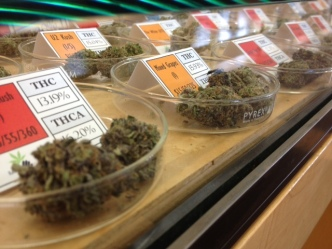Feds Drop Harborside Marijuana Dispensary Case