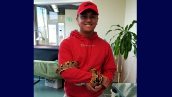 Boa Constrictor Adopted After Recovering from Broken Jaw